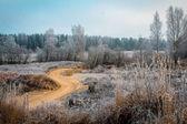песчаная дорога — Стоковое фото