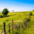 Romanian hills with fence — Stock Photo #63076123