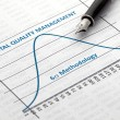 Total Quality Management — Stock Photo #80669988
