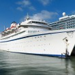 Cruise ship in port — Stock Photo #62567517