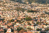 Houses Funchal Madeira — Stock Photo