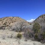 New Mexico high desert — Stock Photo #67646051