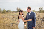 Wedding and love story in nature — Стоковое фото