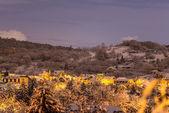 Winter village in Bratislava, Lamac, Slovakia — Stock Photo