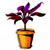 Flower in a flowerpot. color vector — Stock Vector