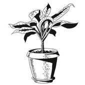 Flower in a flowerpot. vector — Stock Vector