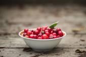 Organic Fresh Cherries — Foto de Stock