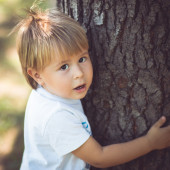 Hugging Trees — Stock Photo
