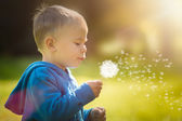 Toddler Blowing a Big Dandelion — Stock Photo