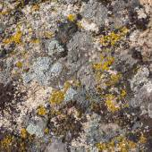 Natural granite stone texture background. Rough and rusty. Close-up — Stock Photo