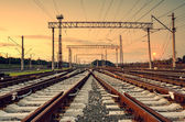 Cargo train platform at sunset. Railway station — Stock Photo