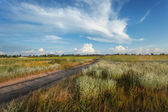 Beautiful sunset. Summer landscape with blue sky, clouds, road — Stock Photo