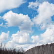 Old wooden fence against blue sky with clouds. Background — Stock Photo #74507699