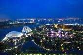 Super trees in Gardens By The Bay park, Singapore — Stok fotoğraf