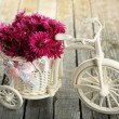 Beautiful chrysanthemums in bicycle — Stock Photo #63084187