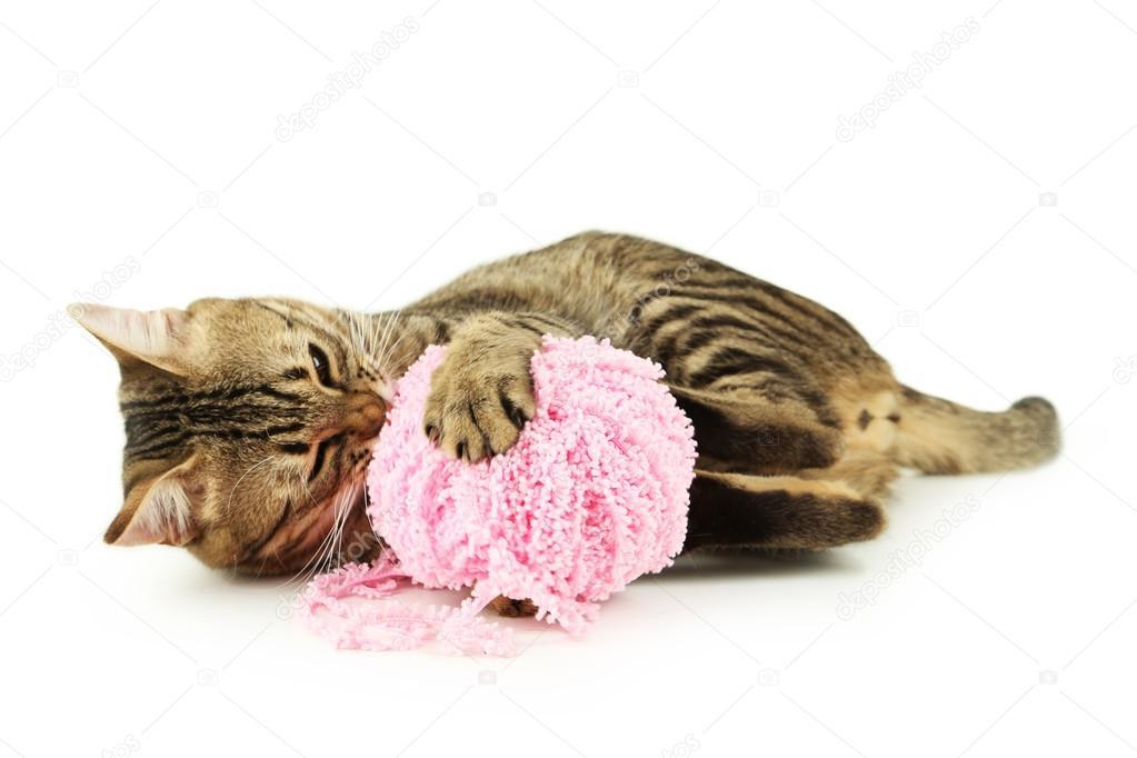 小猫玩球图片_猫玩毛线球 — 图库照片©5seconds#63085027