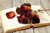 Dried roses on open book — Stock Photo