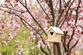Wooden nesting box — Stock Photo