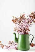 Spring flowering branch in jug — Stock Photo