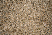 Exposed aggregate finish on the floor  — Photo