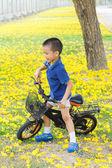 Boy ride bicycle in a park — Foto de Stock