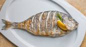 Grilled Dorado on plate — Stock Photo