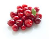 Wild red Cowberries — Stock Photo