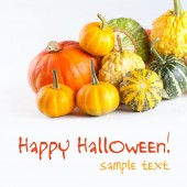 Halloween card with pumkins — Stock Photo