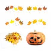 Autumn design element — Stock Photo