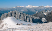 Winter landscape with a mountain valley. A wooden cross with a crucifix near the hut. — Stock Photo