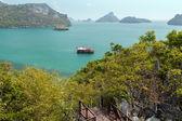 Ansicht des Archipels an der Angthong in Thailand — Stockfoto