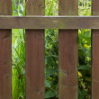 Wooden fence at a garden — Stock fotografie #62764617