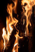 Closeup of burning firewood in fireplace — Foto Stock