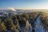 View over Tampere city and snowy trees in Pyynikki — Stock Photo