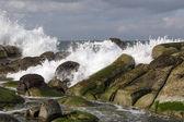 Waves crashing on rocks on shore — Stock Photo