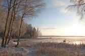 Frosty trees and frozen lake in Finland — Stock Photo
