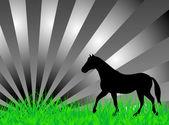 草地上的马 — 图库矢量图片