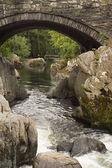 River Llugwy, Betws-y-Coed — Stock Photo