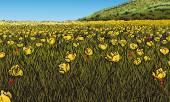 Flowery Meadow — Stock Vector