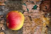 Forgotten apple — Stock Photo
