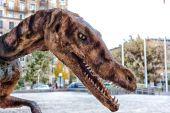 Tyrannosaur — Stock Photo