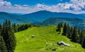 Mountain Meadow - Ciucas, Romania. — Stock Photo