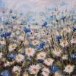 Постер, плакат: Flowers Glade of cornflowers and daisies Summer flowers