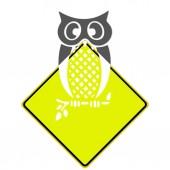 Дорожные знаки с указанием различных — Стоковое фото