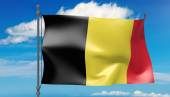 Belgium flag in the wind — Stock Photo