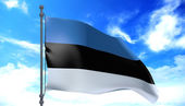 Estonia flag in the wind — Stock Photo