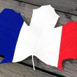 Leaf color flag France — Stockfoto #69463099