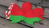 Leaf color flag Belarus — Foto de Stock