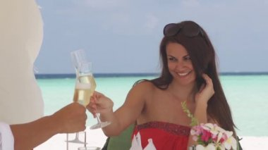 Brunette Sipping Champagne — Stock Video