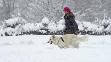 Woman Walking Her dog — Vídeo Stock